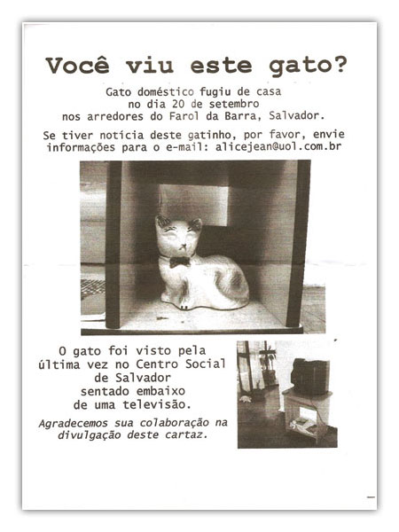 XVIII ANPAP: Cartaz do Gato
