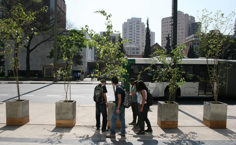 Projeto Amoreiras (Emoção Art.ficial 5.0): árvores na Av. Paulista